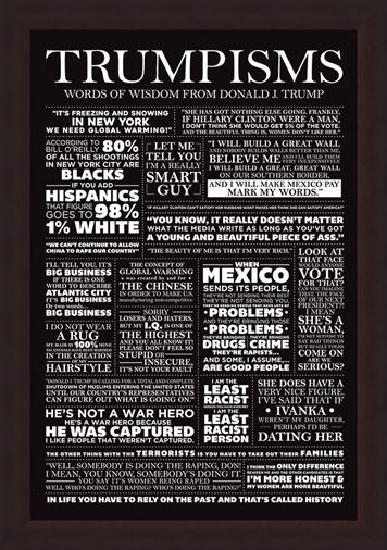 Framed Framed Trumpisms - Words of Wisdom
