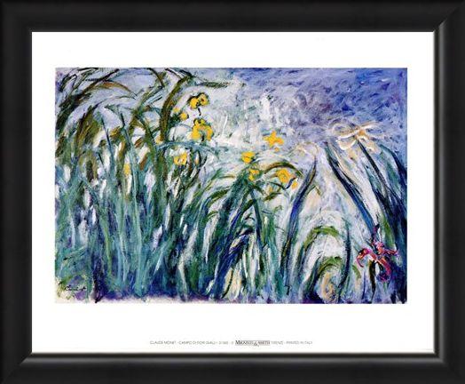 Framed Framed Campo Di Fiori Gialli - Claude Monet