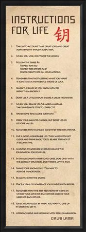 Framed Framed Instructions for Life - According to the Dalai Lama