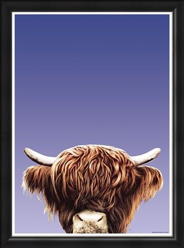Framed Framed Hairy Highland - Inquisitive Creatures