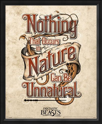 Framed Framed Nothing That Occurs In Nature... - Fantastic Beasts & Where To Find Them