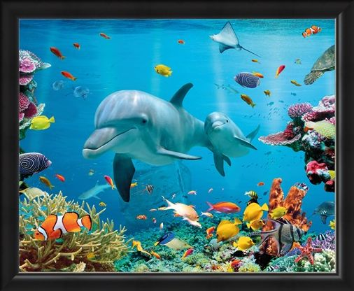 Framed Framed Tropical Ocean - Sea Creatures