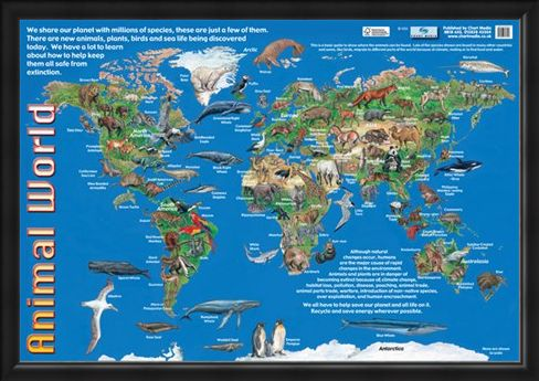 Framed Framed Animals of the World - Animal World Map