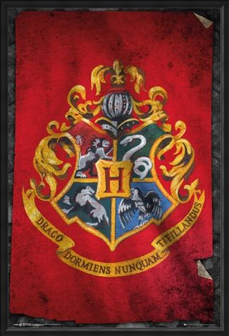 Framed Framed Hogwarts Flag - Harry Potter