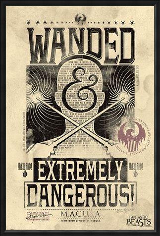 Framed Framed Extremely Dangerous - Fantastic Beasts