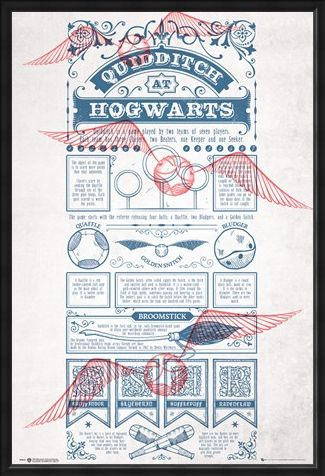 Framed Framed Rough Game, Quidditch - Harry Potter
