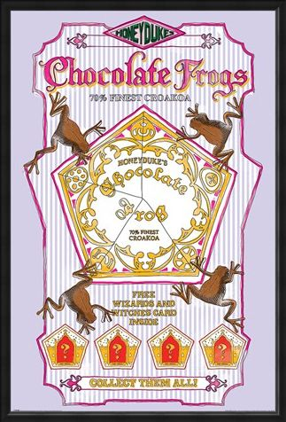 Framed Framed Honeydukes Chocolate Frogs - Harry Potter