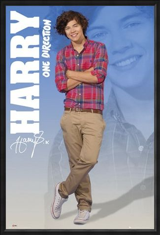 Framed Framed Harry - One Direction