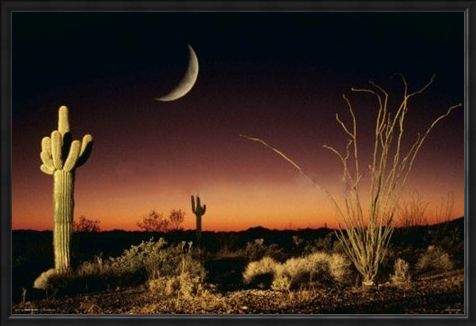 Framed Framed Desert Silhouette - Arizona Landscape