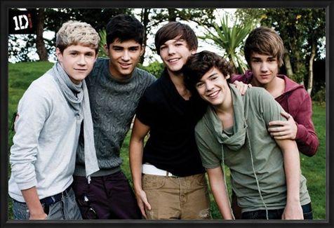 Framed Framed Beautiful Boys in the Garden - One Direction