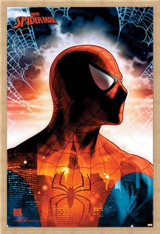 Framed Framed Protector Of The City - Spider-Man