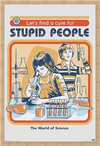 Framed Framed Let's Find A Cure For Stupid People - Steven Rhodes