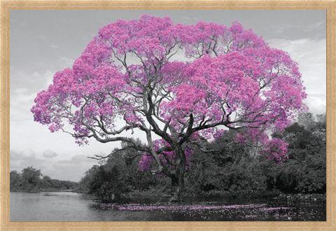 Framed Framed Tree In Bloom - Natural Pink