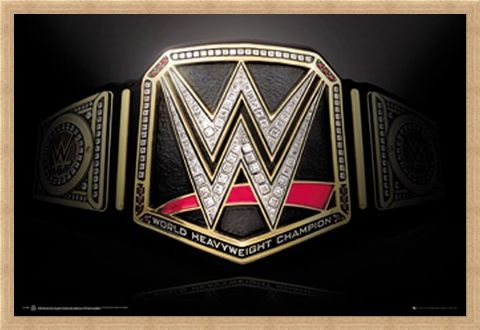 Framed Framed Title Belt - WWE