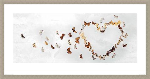 Framed Framed Butterfly Heart - Ian Winstanley