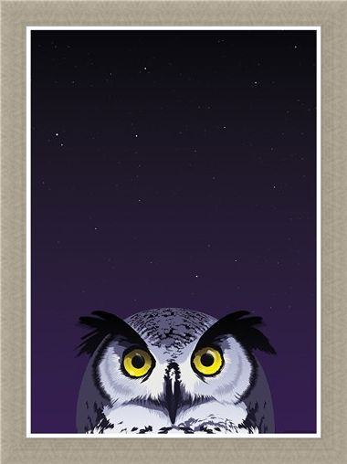 Framed Framed Wide-Eyed Owl - Inquisitive Creatures