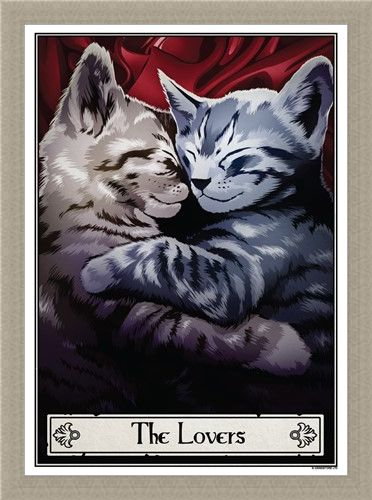 Framed Framed The Lovers - Deadly Tarot Felis
