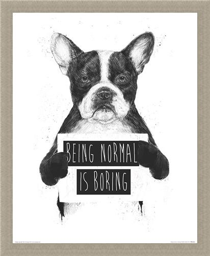 Framed Framed Being Normal Is Boring - Balazs Solti