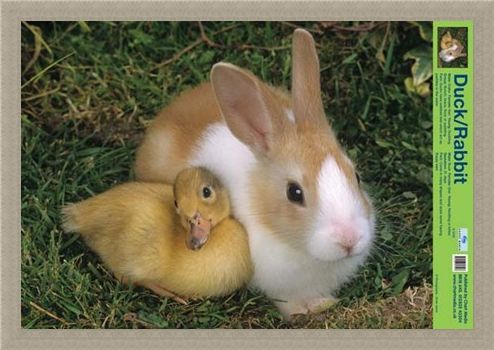Framed Framed Best Friends - Duck And Rabbit