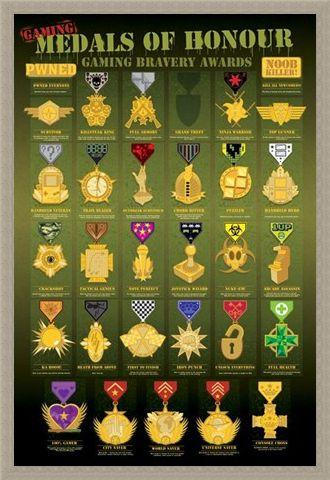 Framed Framed Medals of Honour - Computer Game Awards