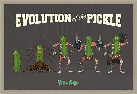 Framed Framed Evolution Of The Pickle - Rick and Morty