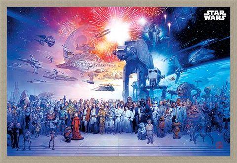 Framed Framed Universe - Star Wars