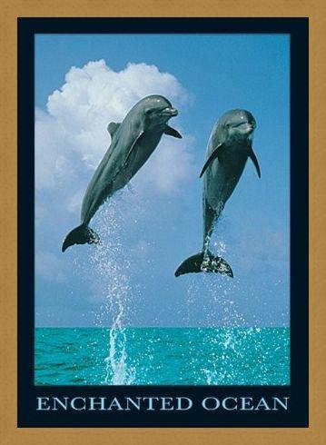 Framed Framed Dolphins Jumping - Enchanted Ocean