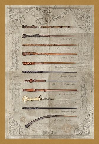 Framed Framed The Wand Chooses The Wizard - Harry Potter