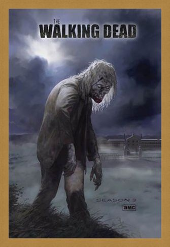 Framed Framed Flesh Eating Walker! - The Walking Dead