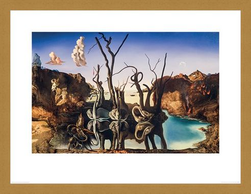 Framed Framed Swans Reflecting Elephants - Salvador Dali