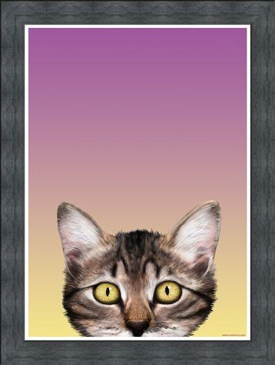 Framed Framed Kitten Eyes - Inquisitive Creatures