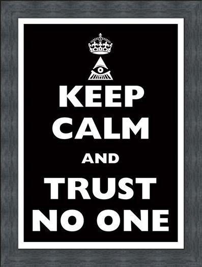 Framed Framed Keep Calm & Trust No One - Keep Calm & Carry On