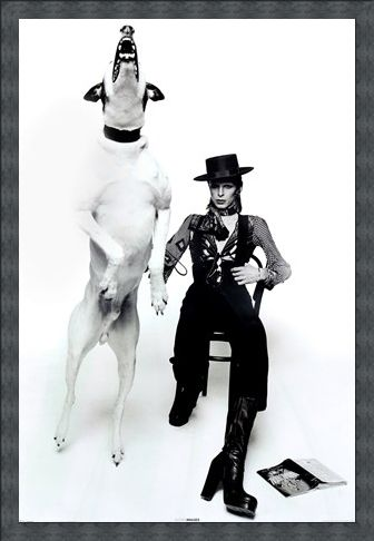 Framed Framed Diamond Dogs - David Bowie