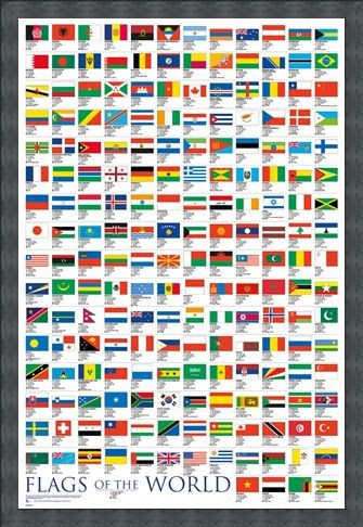 Framed Framed Flags Of The World - Educational