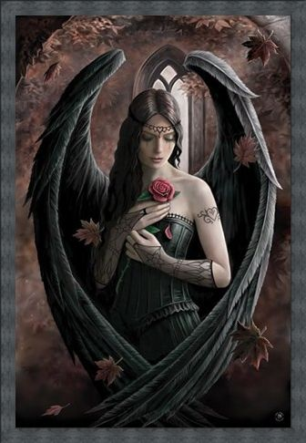 Framed Framed Angel Rose - Anne Stokes