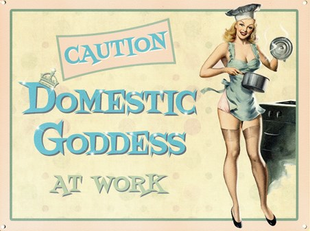 Domestic Goddess At Work - Caution