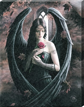 Angel Rose Canvas Print - Anne Stokes