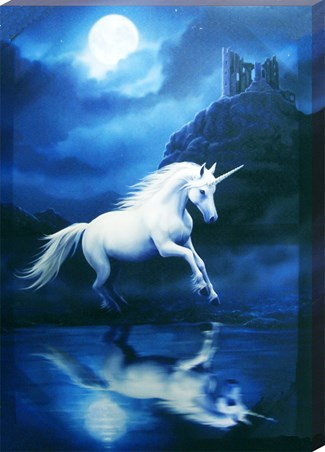 Moonlight Unicorn - Anne Stokes