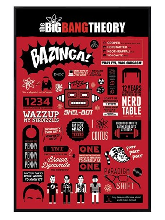 Gloss Black Framed The Big Bang Theory Infographic -