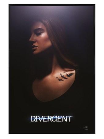 Gloss Black Framed Tris - Divergent