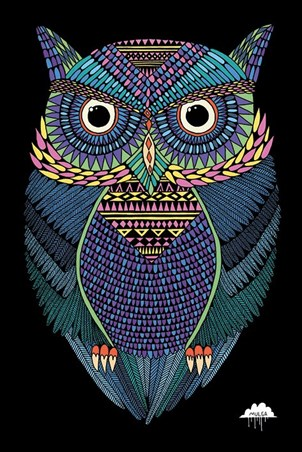 Michael The Magical Owl - Mulga