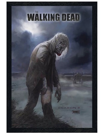 Black Wooden Framed Flesh Eating Walker! - The Walking Dead