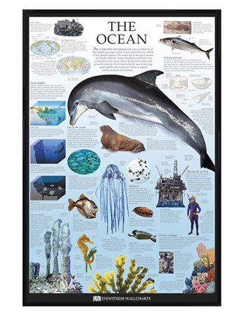 Gloss Black Framed The Ocean - Dorling Kindersley
