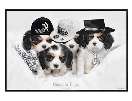 Framed Gloss Black Framed Gangsta Pups - Keith Kimberlin