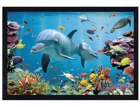Black Wooden Framed Tropical Dolphins, Under The Sea