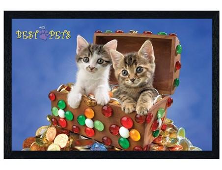 Framed Black Wooden Framed Kitten Treasure - My Best Pets