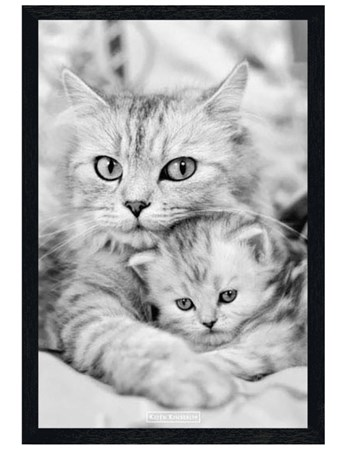Black Wooden Framed Cat and Kitten - Keith Kimberlin