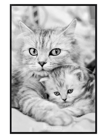 Gloss Black Framed Cat and Kitten - Keith Kimberlin