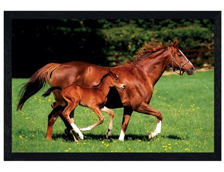Black Wooden Framed Mare and Foal - Horses
