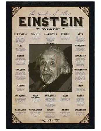 Black Wooden Framed The Wisdom of Albert Einstein - Einstein